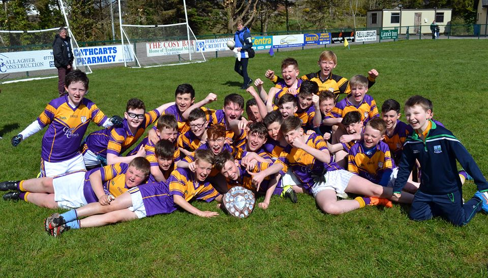 Well done Derrygonnelly Harps